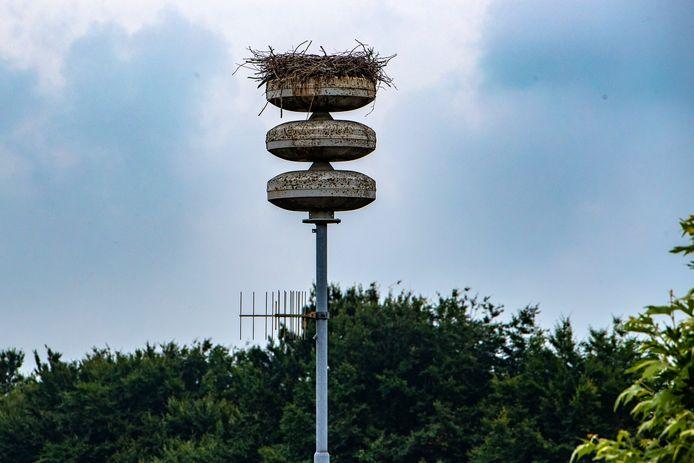 Het lege ooievaarsnest op de WAS-mast in Raalte. Maar zijn de vogels écht gevlogen?
