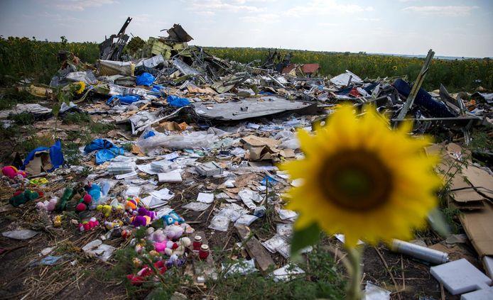 Een zonnebloem steekt uit boven het puin en de wrakstukken in het rampgebied van de MH17.