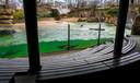 In de Berlijnse dierentuin zwemmen de zeeleeuwen nog steeds rond, maar blijven de tribunes leeg. Het dierenpark blijft tot nader order gesloten.