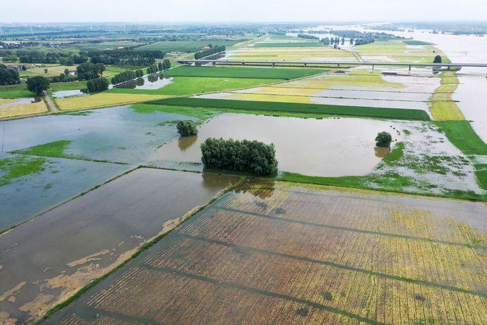 Het hoogwater heeft ook de Willemspolder bij Echteld niet overgeslagen.