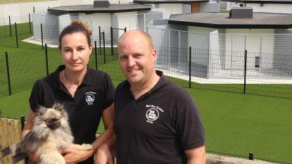 """Ook dierenhotel trekt aan alarmbel en schrijft ministers aan: """"Onze inkomsten vallen terug op nul"""""""
