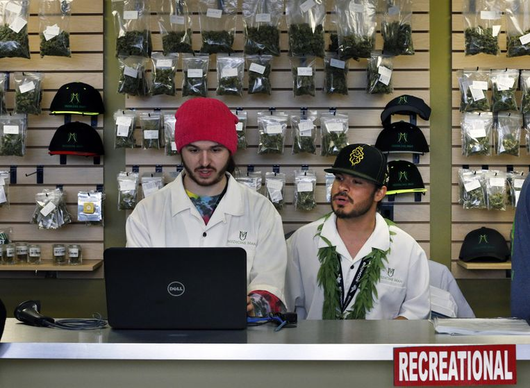 Werknemers van wietwinkel Medicine Man in Denver, Colorado. Beeld AP