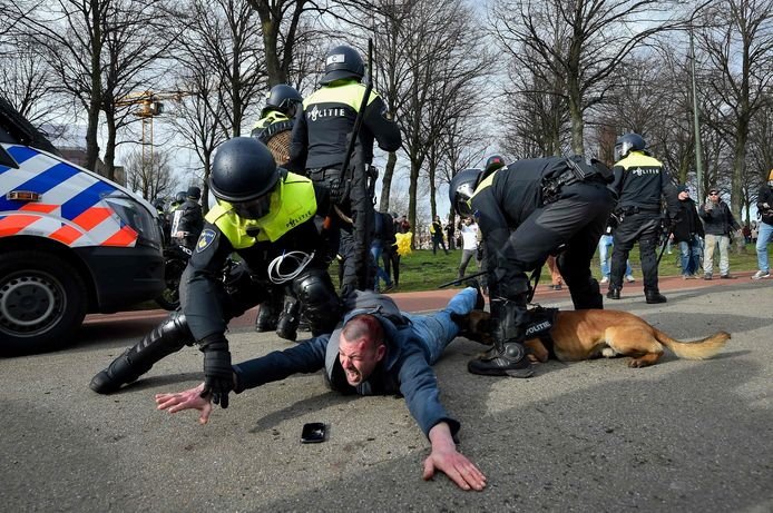 Een man wordt hardhandig aangehouden door agenten. Op filmpjes is te zien hoe hij liggend op de grond op zijn hoofd wordt geslagen en moet vechten tegen de politiehond.
