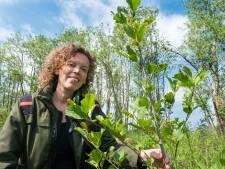 Nuchter, liefdevol en haarscherp: Plotseling overleden Jenny (41) was een boswachter 2.0