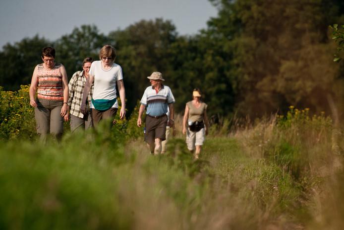 Deelnemers aan de zomeravondwandelingen van wandelkring DIO.