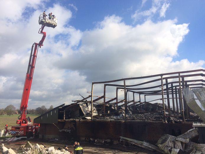 De varkensstal in Oirschot is na de brand helemaal verwoest.