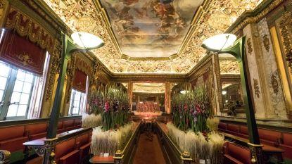 Gentse Floraliën bebloemen stadhuis van Brussel