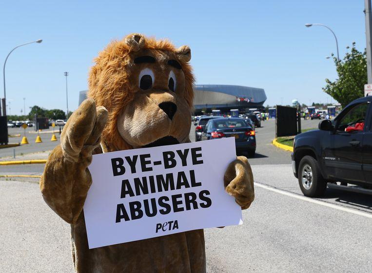 PETA is vooral bekend voor haar acties voor dierenrechten. Maar het hoge euthanasiecijfer in het asiel in Virginia komt de organisatie op  kritiek te staan. Beeld AFP