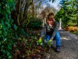 De lente komt eraan! Wat mag je wel en niet doen in de tuin?