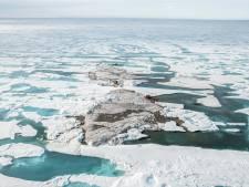 Des scientifiques découvrent un îlot inédit à l'extrême nord de la planète