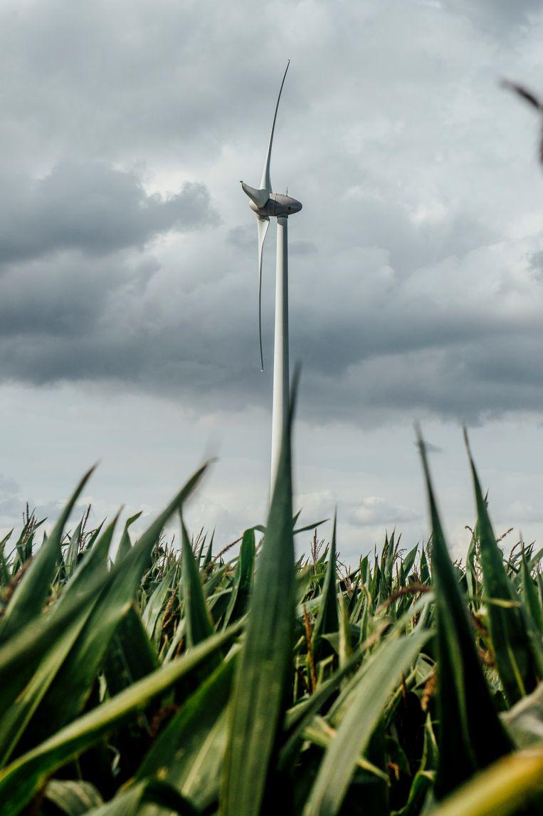 Qua rendement van de landbouwgrond kan zo'n windturbine tellen. Beeld Stefaan Temmerman