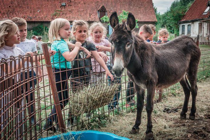 De werking draait niet meer enkel rond het boerderijleven. Kinderen en jongeren leren er nu ruimer oog hebben voor natuur en milieu