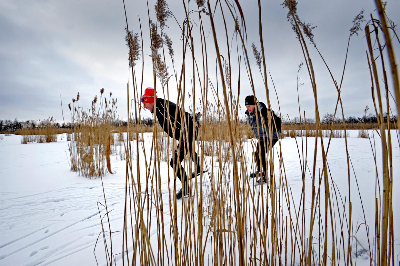 Schaatsers op het Naardermeer bij Muiderberg in 2012.  Beeld Raymond Rutting / de Volkskrant