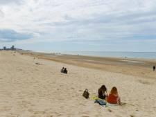 L'état de santé de la mer du Nord reste inquiétant
