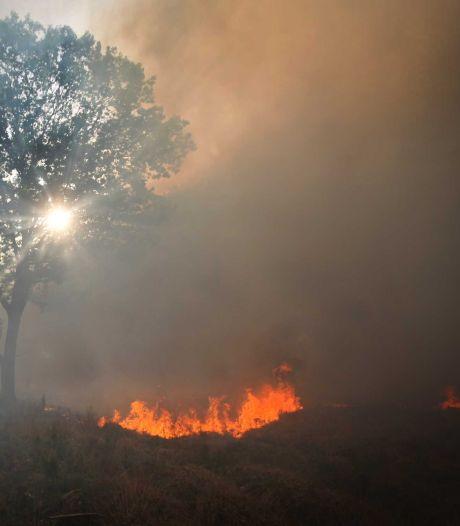 Boot in Wierum gaat in vlammen op, mogelijk sprake van brandstichting