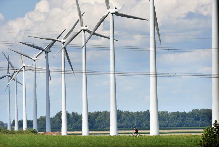 Windmolens in de Flevopolder. Beeld Marcel van den Bergh