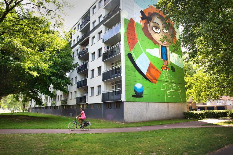 Muurschildering op een flat in de multiculturele achterstandswijk Stokhasselt in Tilburg. Veel jongeren die nog thuiswonen, maken geen gebruik van de bijstandsuitkering waar ze recht op hebben. Beeld ANP