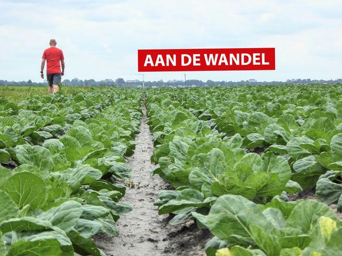 Aan De Wandel: Woubrugge.