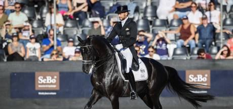 Paniek in hippische wereld: 'Er gaan paarden dood'
