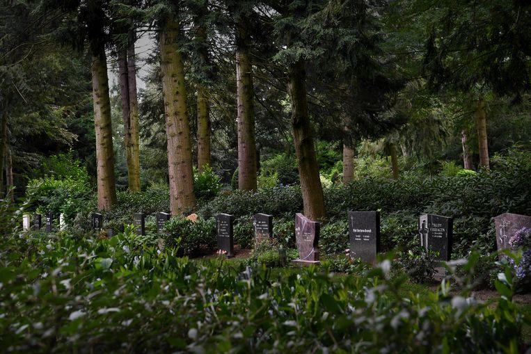 Begraafplaats de Hoge Boght in Veldhoven. Beeld Marcel van den Bergh / de Volkskrant