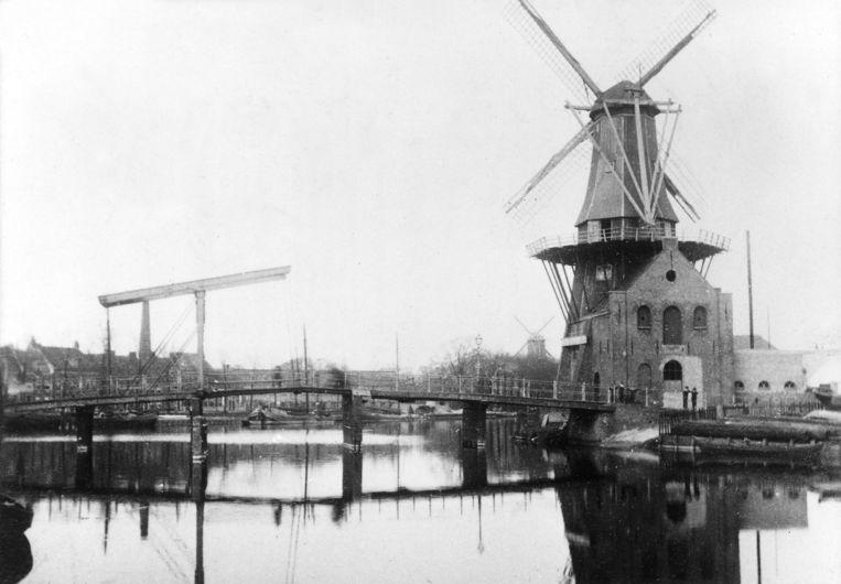 Windmolen aanhet Spaarne in Haarlem rond 1890. Beeld Getty Images