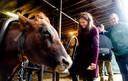 Minister Schouten van Landbouw, Natuur en Voedselkwaliteit (LNV) bezoekt een boerderij.