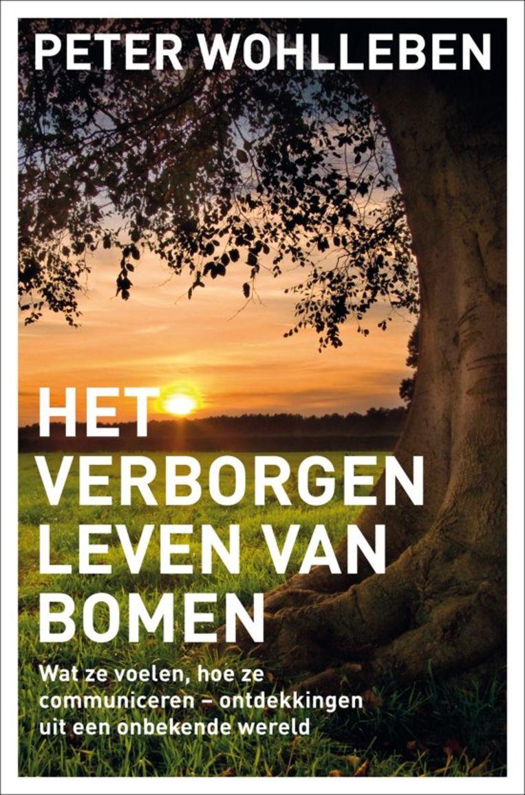 Peter Wohlleben: Het verborgen leven van bomen. Beeld