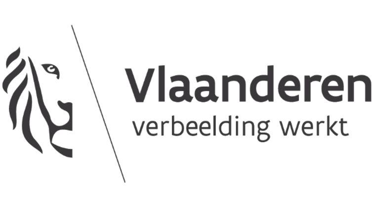 Nieuwe Vlaamse leeuw kost overheid bijna 1 miljoen euro | De Morgen