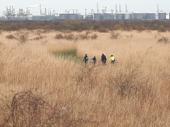 Forensisch onderzoekers en leden van het NFI trekken diep het Groene Strand in, op zoek naar meer menselijke resten. Op de achtergrond de Maasvlakte.