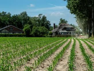 FAVV bekijkt mogelijke implicaties voor te koop aangeboden voedingsproducten uit regio PFOS-vervuiling