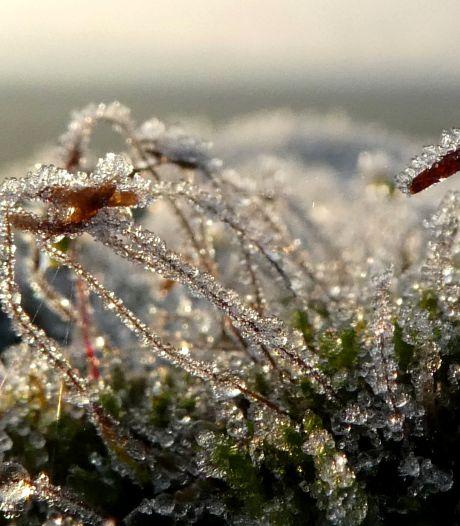Eerste landelijke nachtvorst gemeten in de Bilt: 'Maar echt winter gaat het nog niet worden'