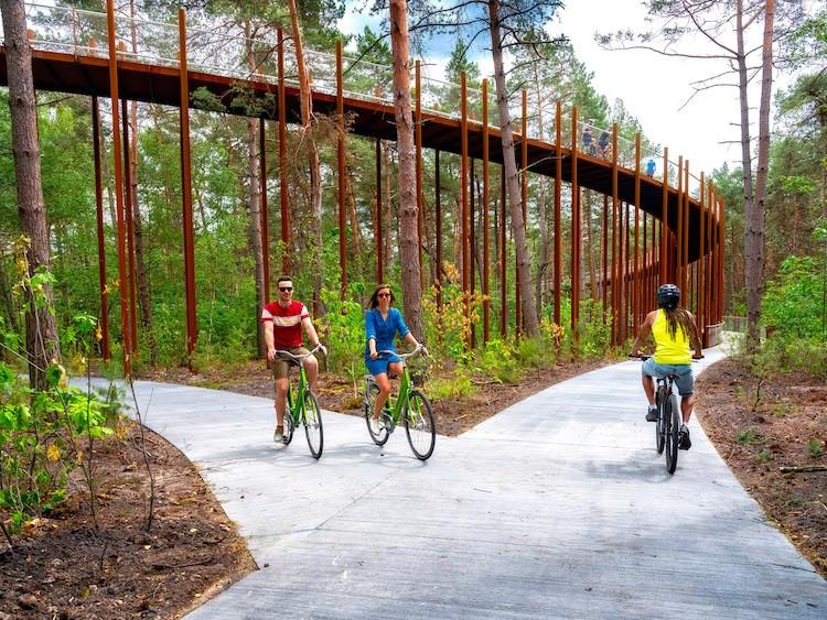 Également accessible aux promeneurs et joggeurs, ce sentier surélevé par des piliers en acier Corten, semble se fondre dans la réserve naturelle de Pijnven qui l'entoure.
