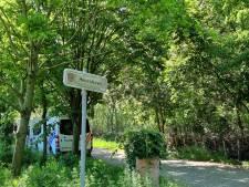Jürgen Conings woonde jarenlang in chalet in het doorzochte bos