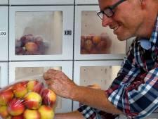 Een appel of eitje uit de muur: het boerenerf als 'buurtsuper'