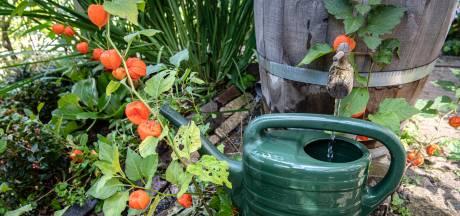 Zaag de regenpijp door en nog meer tips voor een waterproof huis