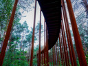 Vous pédalez entre les arbres jusqu'à une hauteur de dix mètres.
