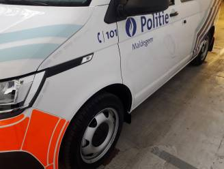 Twee dievegges riskeren tot 18 maanden cel voor inbraak in Koningin Fabiolalaan