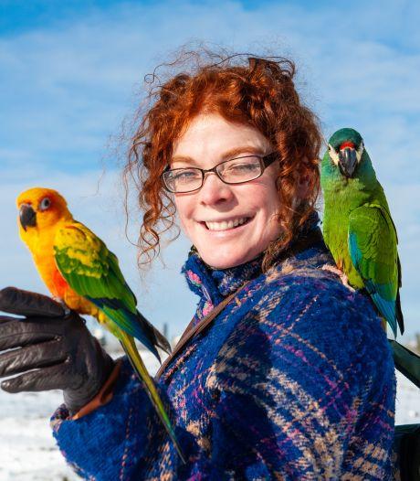 Renske (37) laat haar papegaaien vrij rondvliegen, en dat zorgt voor veel bekijks: 'Kiekeboe!'