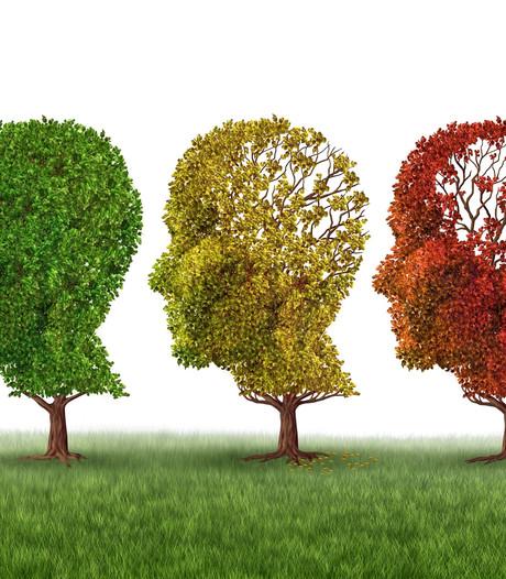 Hof van Twente wil openbare ruimte 'dementievriendelijk' maken