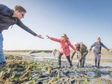 Glibberen door de Zeeuwse klei in het Verdronken Land van Zuid-Beveland