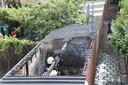 Een bewoner is aangehouden op verdenking van brandstichting.