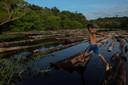 Het Amazone-regenwoud in Brazilië.