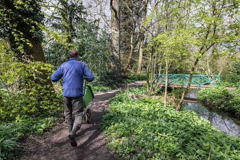 Barendse heeft over elke boom in Park Frankendael een verhaal. Beeld Dingena Mol