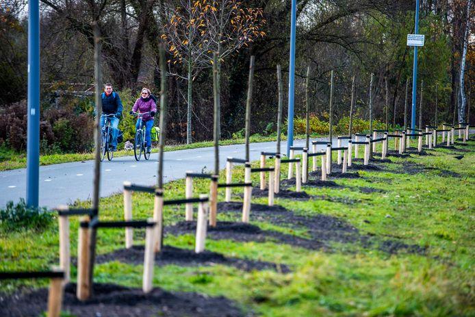 Het Havenspoorpad, dat wordt omzoomd door honderden herdenkingsbomen, moet exclusief voor fietsers en wandelaars blijven, vinden omwonenden en de Fietserbond.