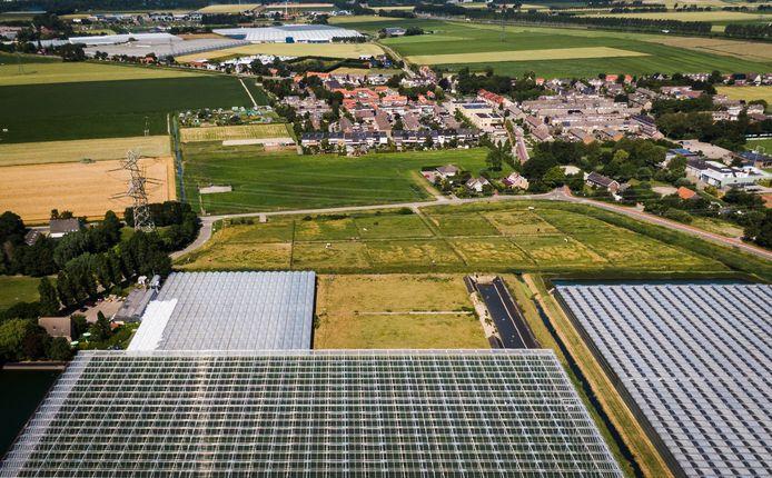 De locatie van de toekomstige biomassacentrale in Vierpolders.