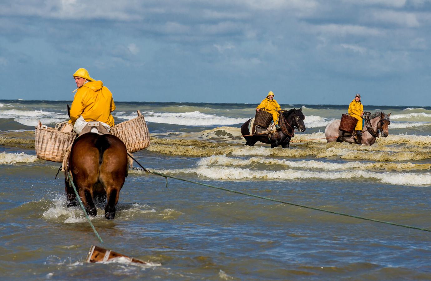 Garnalenvissers in Oostduinkerke.