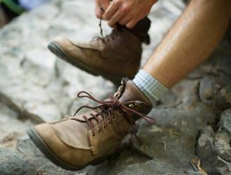 Landelijke Gilde zorgt voor extra wandelpret in Lier en Koningshooikt