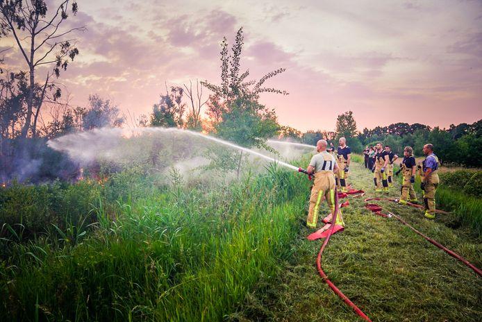 Brandweermannen maken een stoplijn om het vuur tegen te houden.
