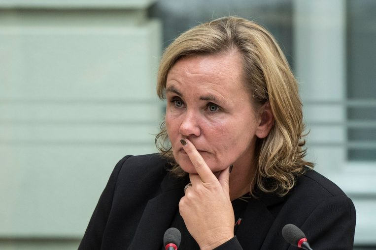 Vlaams minister van Ambtenarenzaken Liesbeth Homans (N-VA) Beeld Photo News