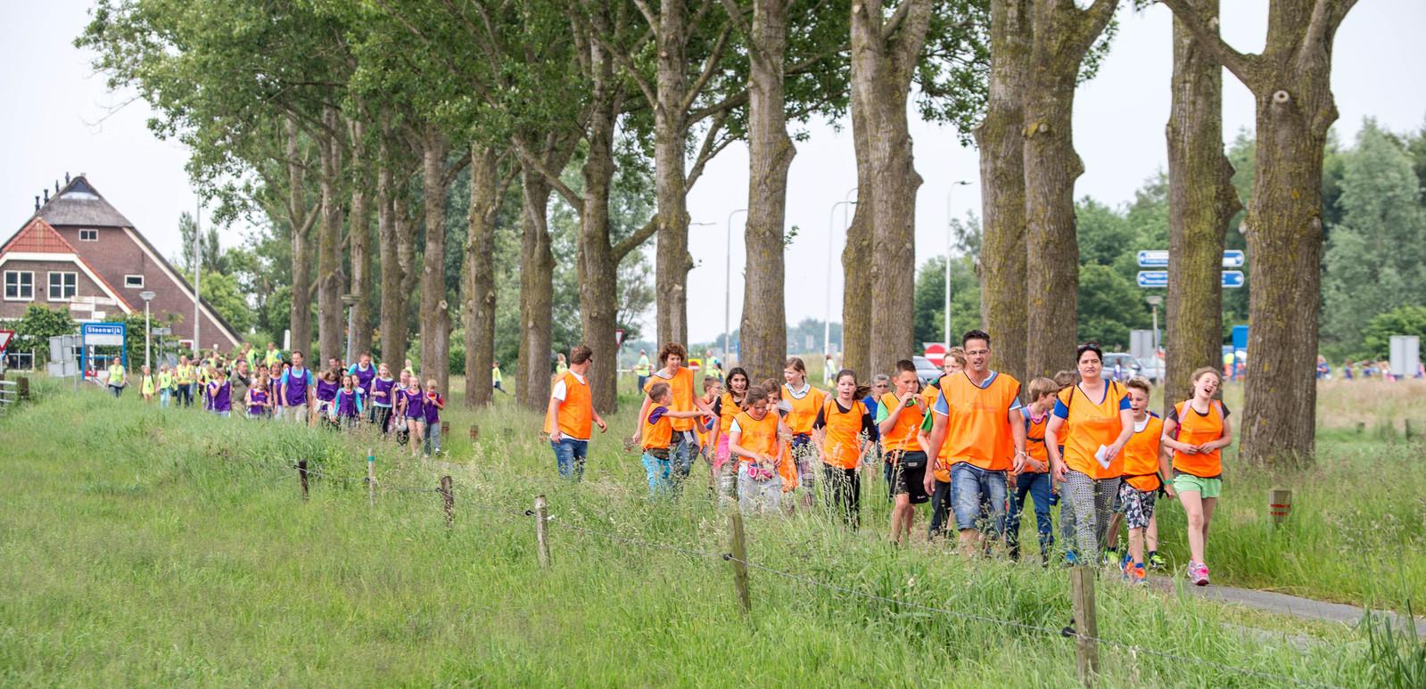 Deelname aan de vierdaagse is vooral populair bij jeugd van de basisschool. Voor de tweede keer op rij gaat de Avondvierdaagse in Steenwijk niet door.